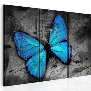 Kuva - The study of butterfly - triptych-1