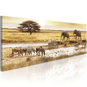 Kuva - Africa: at the waterhole-1