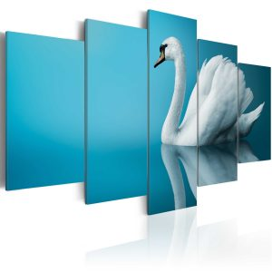 Kuva - A swan in blue-1
