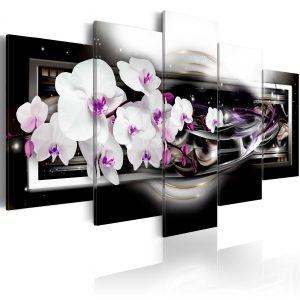 Kuva - Orchids on a black background-1