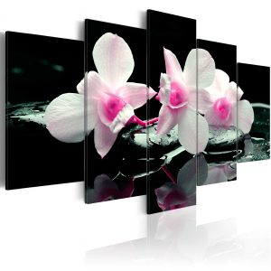 Kuva - Rest of orchids-1