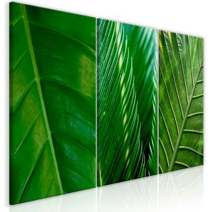 Kuva - Leaves (Collection)-1
