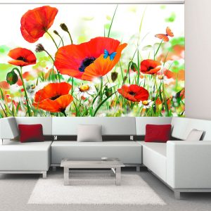 Fototapetti - Country poppies-1