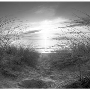 Fototapetti - beach (black and white)-2
