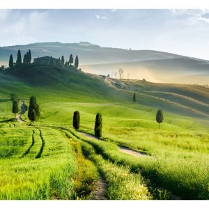 Fototapetti - Morning in the countryside-2