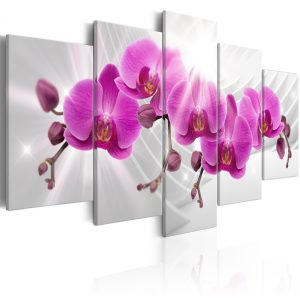 Kuva - Abstract Garden: Pink Orchids-1