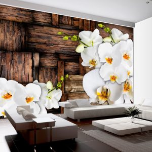 Fototapetti - Blooming orchids-1