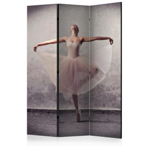 Sermi - Classical dance - poetry without words [Room Dividers]-1